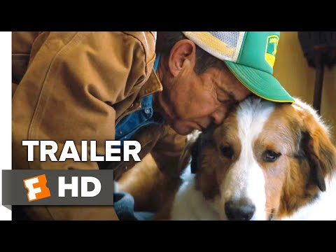 a-dog's-journey-trailer-#1-(2019)-|-movieclips-trailers