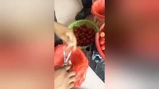 과일 씨앗 제거 주방 잡화 도구