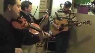 Wild Oats: Bluegrass Music