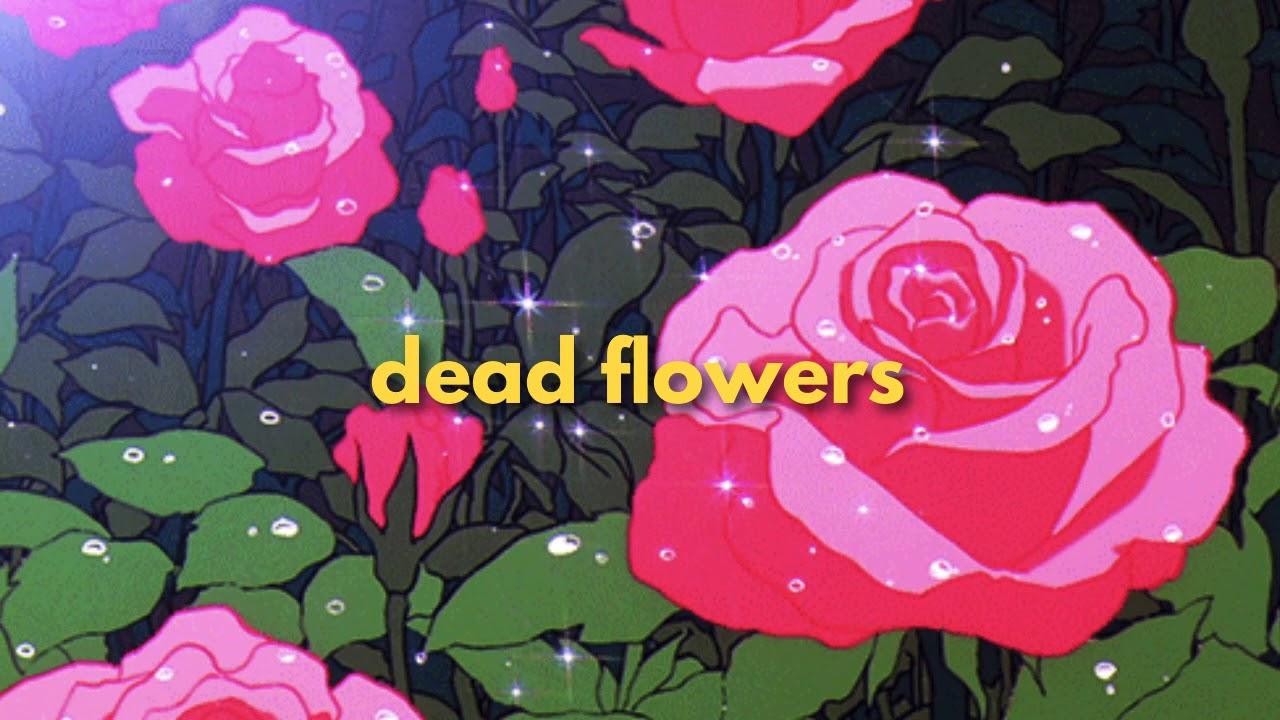 dizzy wolfe - dead flowers
