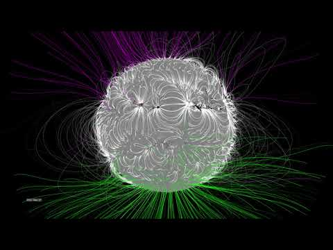 The Dynamic Solar Magnetic Field