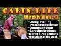 OFF GRID CABIN LIFE  Weekly Vlog #3
