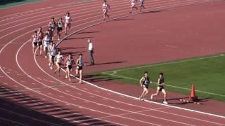 2017東部高校総体 男子1500m 決勝