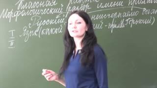 Новикова М.В. фрагмент урока