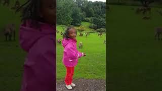 Lustige Kinder Video