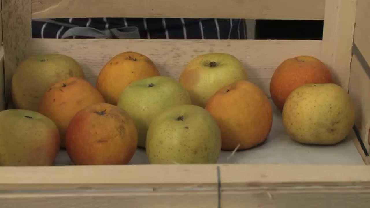 Comment conserver des pommes youtube - Comment conserver des pommes coupees ...