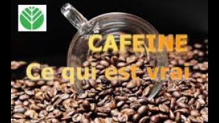 La vérité sur la Caféine