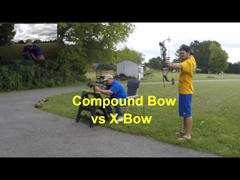 Compound Bow Vs Xbow