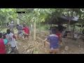 Polisi Datang Tiba-tiba, Pelaku Judi Sabung Ayam Lari Mengibrit Ketakutan -  86 video