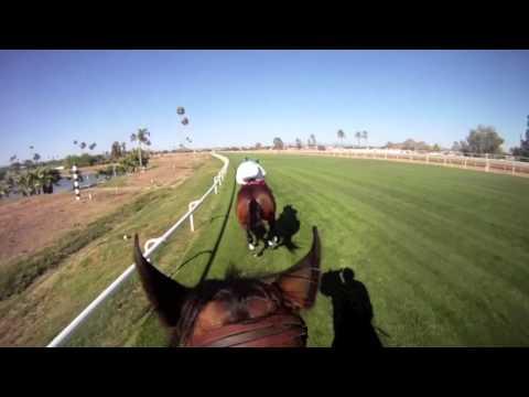 Jockey Cam: Scott Stevens at Turf Paradise