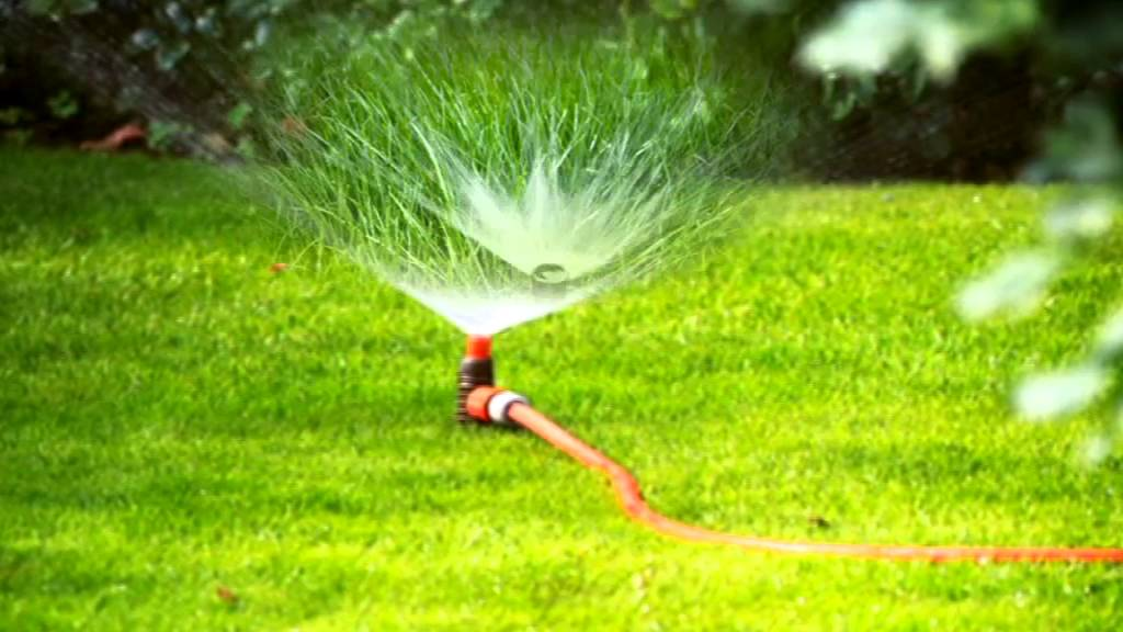 Grass Watering Best Way To Water The Lawn And Use A