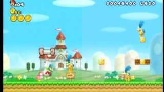 New Super Mario Bros. Wii Codes