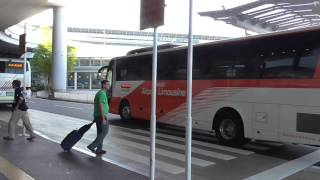 Take The Airport Limo Bus from Narita Airport into Tokyo