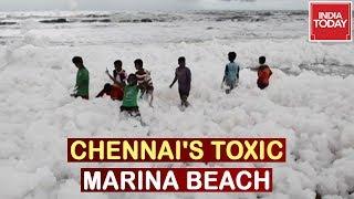 Chennai's Toxic Beach : Chemicals Choke Marina Beach, Watch This Exclusive Report