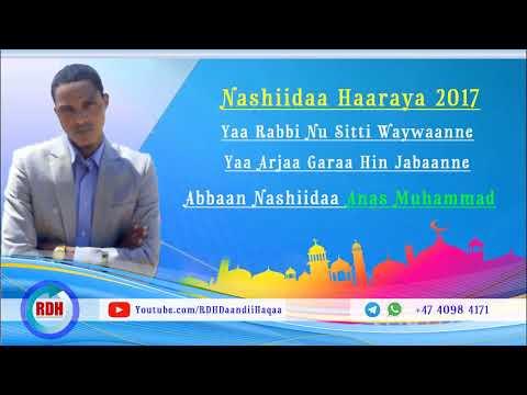 """Download Nashiidaa Haaraya Anas Muhammad """"Yaa Rabbi Nu Sitti Waywaanne"""" - RDH"""