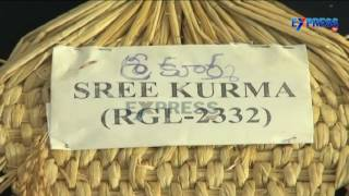 Rice varieties and cultivation methods for North Coastal AP - Express TV