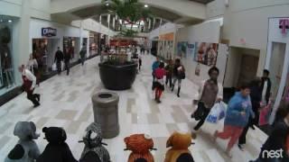 Crossgates Mall Shooting Video