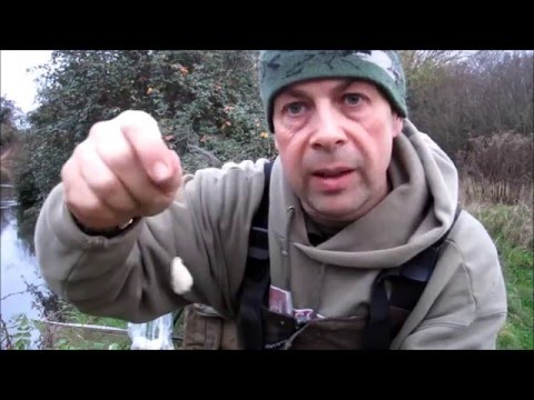 Chub Fishing A Short Session On The River Kennet