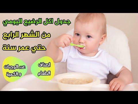 جدول يومي لاكل الطفل الرضيع من الشهر الرابع الجزء الأول تعليمات ادخال الطعام للرضع في صندوق الوصف Youtube