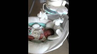 1st week. Baby is on a Fisher Price swing. 娘はスイングに乗せるとよ...