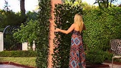 Compass Home Expandable Faux Ivy Privacy Fence on QVC