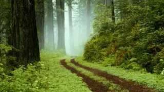 Trance Music - I Like Chopin (Techno Remix)