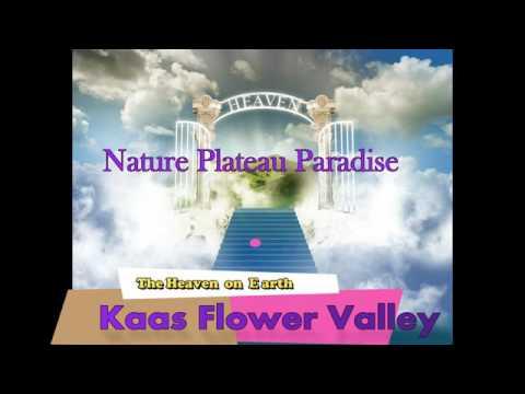 HOTEL NATURE PLATEAU PARADISE KAAS