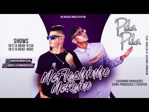 MC FLESHINHO E MC REINO - PULA PULA - MÚSICA NOVA 2018