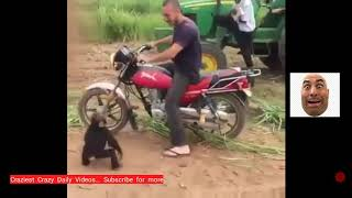 Funny baby Monkey throwing tantrum when told to get down from Motorbike