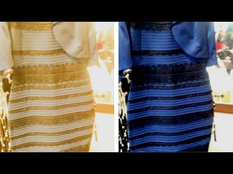 0138a95e6  قصة الفستان الذي حير العالم The Dress #NAV - YouTube