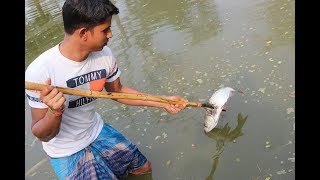 Fish Hunting With Bamboo Fishing Spear | Wild Style Fish Catching In Village