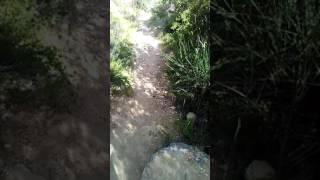 Chemin de saint quinnis