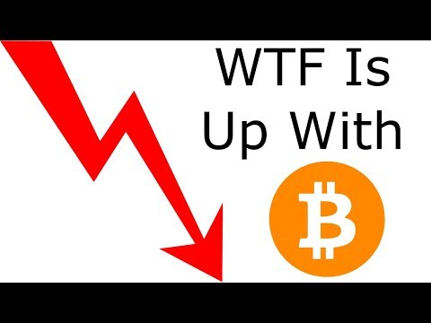 Bitcoin Bulletin: 22nd Feb WTF Is Up With Bitcoin Price Today?