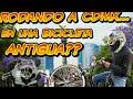 Bicicletas antiguas México / Rodando en bicicleta CDMX / bicicleta antigua