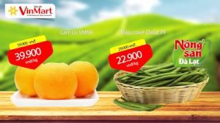 Cẩm nang mua sắm 2115 - VinMart Miền Bắc 06/11 - 26/11/2015 - Final
