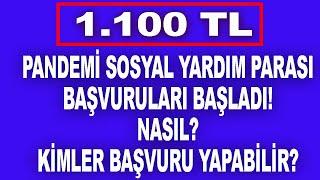 1100 TL Sosyal Destek Yardım Parası Başvurusu Nasıl Yapılır?