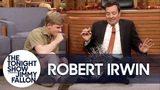 Download Robert Irwin's Baby Porcupine Finds a Home on Jimmy's Lap Mp3 and Videos