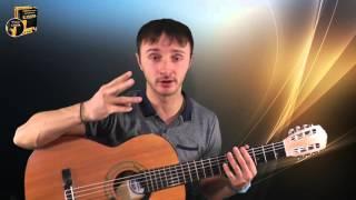 Семен Слепаков - Я хочу обратиться к врачу (разбор песни) как играть на гитаре
