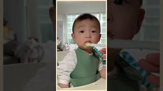 shorts. 8개월 아기 이유식 먹방 | 조이풀하우스