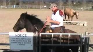 One Rein Stop- Horses Feeding off each other- Fresh Horse- Rick Gore Horsemanship