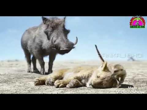 Odia Funny Stutas Video Made By Pankaj Gupta...