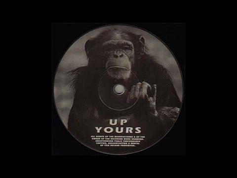 Vinylgroover - Raving I'm Raving