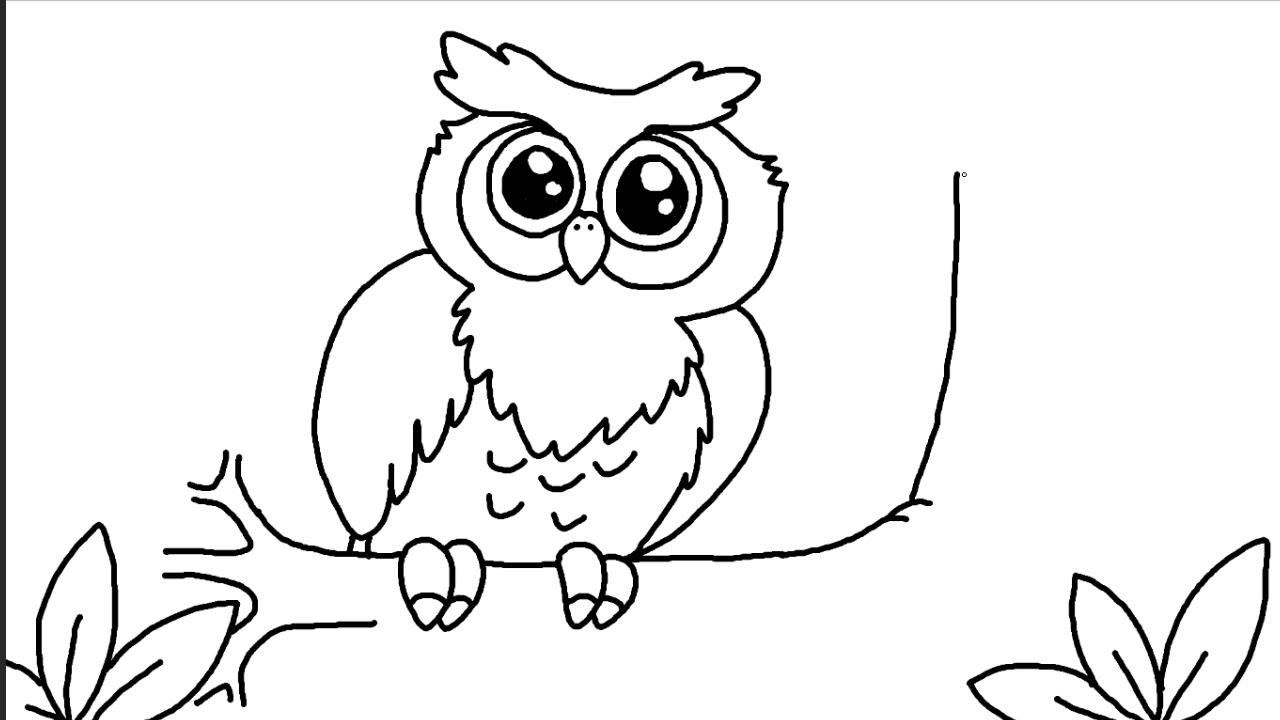 Cara Menggambar Burung Hantu Imut Dengan Mudah Youtube