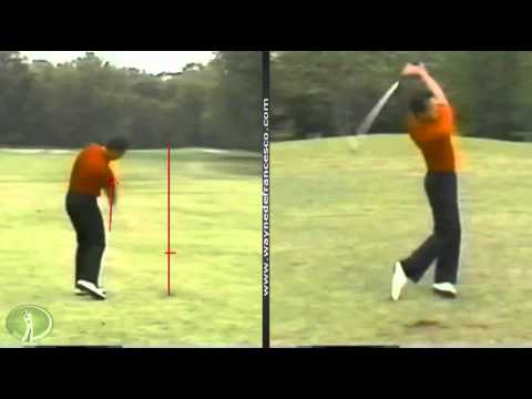 Swing Analysis: Tom Purtzer