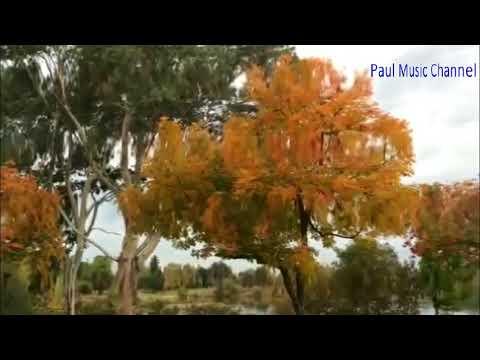 Travel to United States: Almaden Lake Park in Autumn 2017