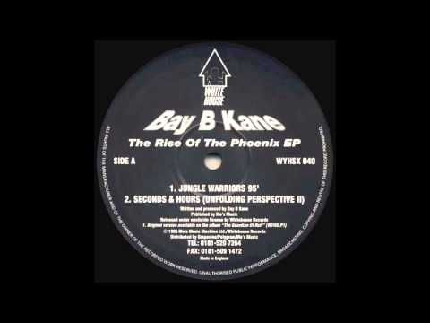 Bay B Kane - Seconds & Hours (Unfolding Perspective II)