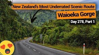 Waioeka Gorge: New Zealand's Most Underrated Scenic Route – New Zealand's Biggest Gap Year