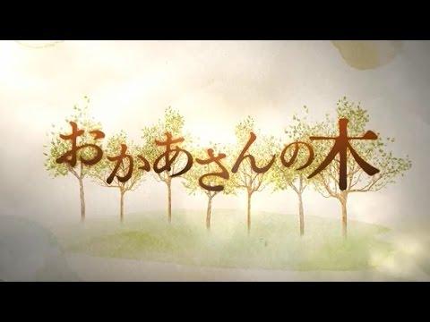 映画「おかあさんの木」予告編