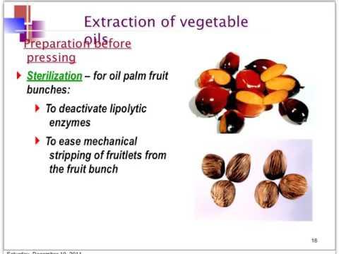 Extraction of Palm Oil (with cc: Thai)
