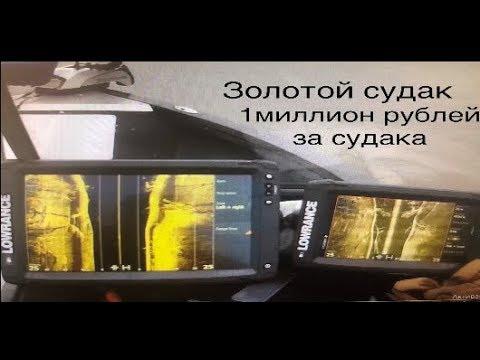 """Ловля трофейного судака """"Золотой судак"""", 1 миллион рублей за два дня"""